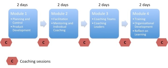 team-facilitator-structure