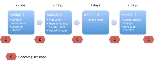 teams-coach-structure